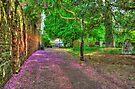 Blossom Path by Nigel Bangert