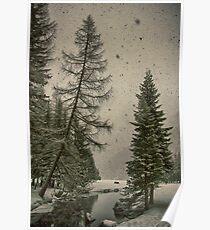 Heavy snowfall winter landscape color - Alberi d'Inverno Poster