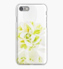 Double-flowered Snowdrop, Galanthus nivalis forma pleniflorus. iPhone Case/Skin