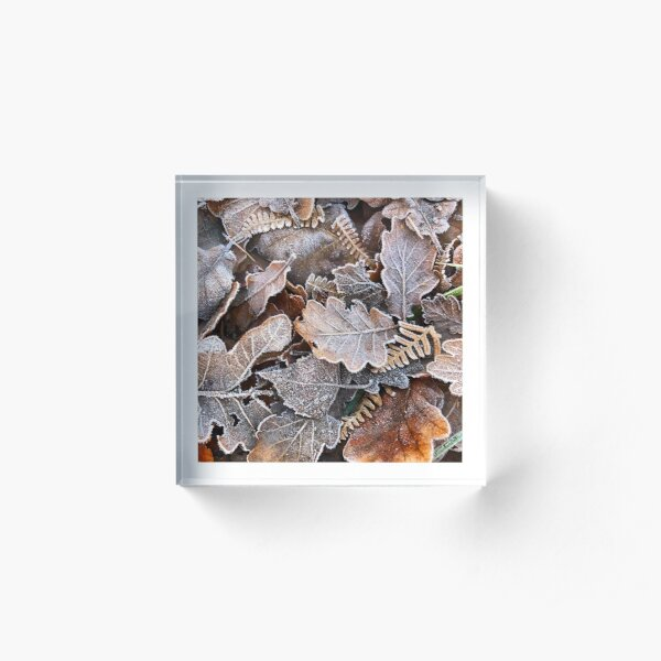 Frosted Leaves  Acrylic Block
