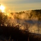 Winter Mist by Roxanne Persson