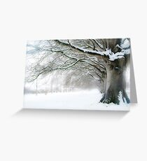 Winter Beeches Greeting Card