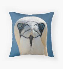 Northern Gannet (Morus bassanus) Throw Pillow