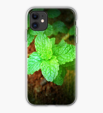 Fresh Mint iPhone Case