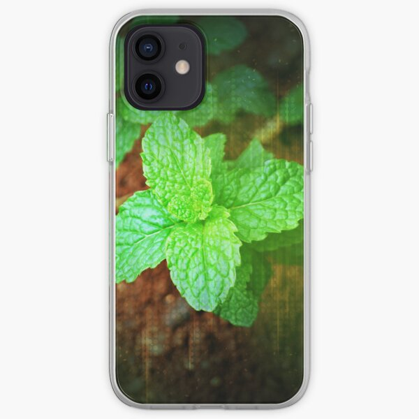 Fresh Mint iPhone Soft Case