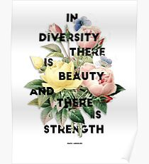 In Diversity   Poster