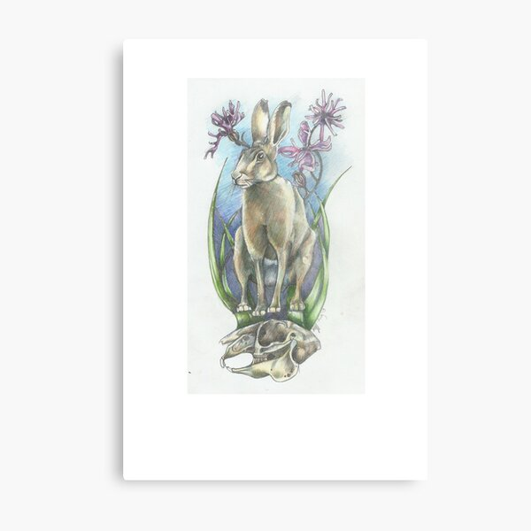 Summer Hare days Metal Print