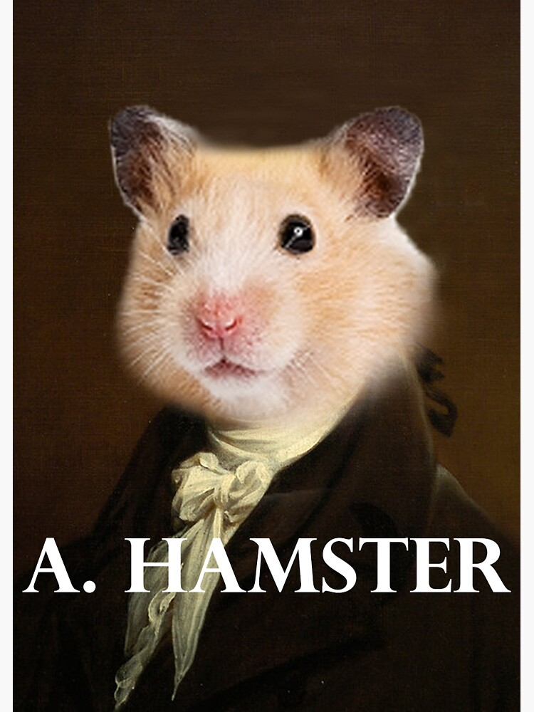 Alexander Hamilton - Hamster by imaginedworlds