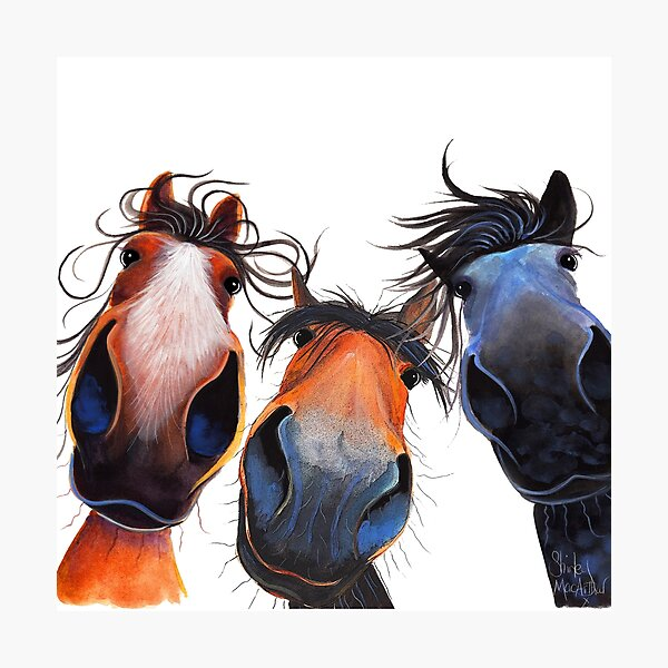 HaPPY HoRSe PRiNT ' WHo LeFT THe GaTe OPeN ? ' BY SHiRLeY MacARTHuR Photographic Print
