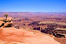 Canyonlands by Bill Wetmore