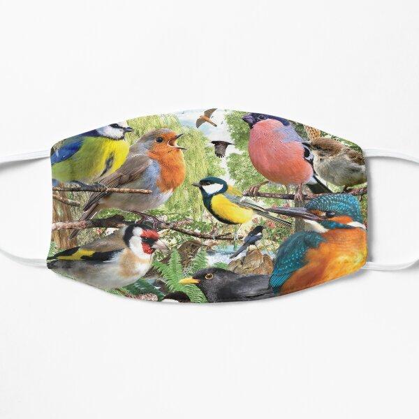 British Birds Flat Mask