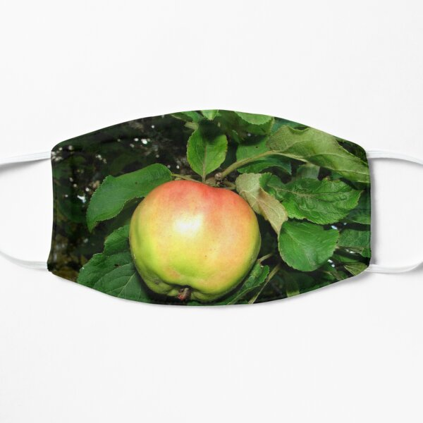 Apple on the branch Flat Mask
