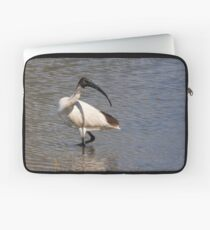 Australian White Ibis Laptop Sleeve