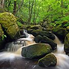 Padley Gorge by Stephen Liptrot