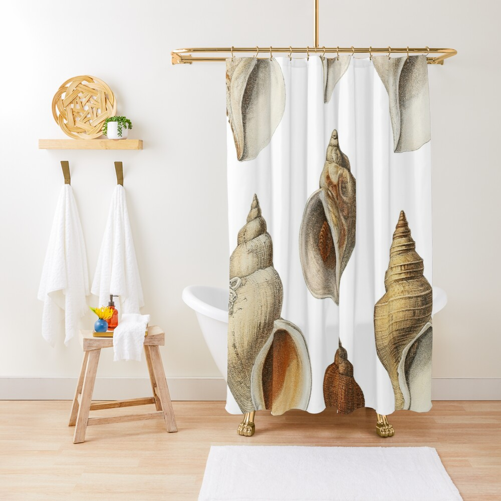 White Molluscs of the Northern Seas Shower Curtain