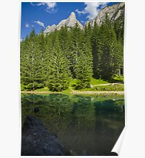 Green alpine lake in the summer and mountain peak in the Alps - Il paradiso verde Poster
