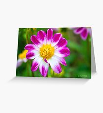 Come Hither, My Sweetheart Greeting Card