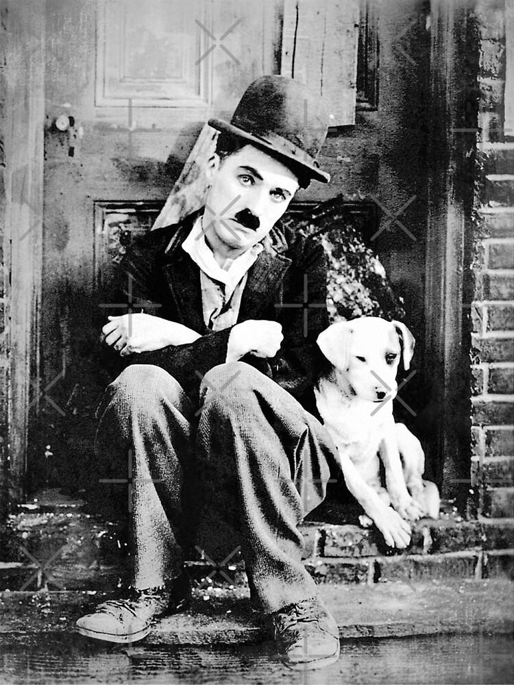 Chaplin - Dog Life - D17 de DecoWords