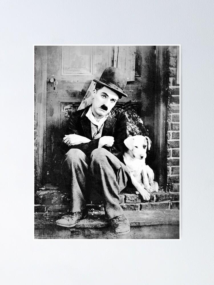 Vista alternativa de Póster Chaplin - Dog Life - D17