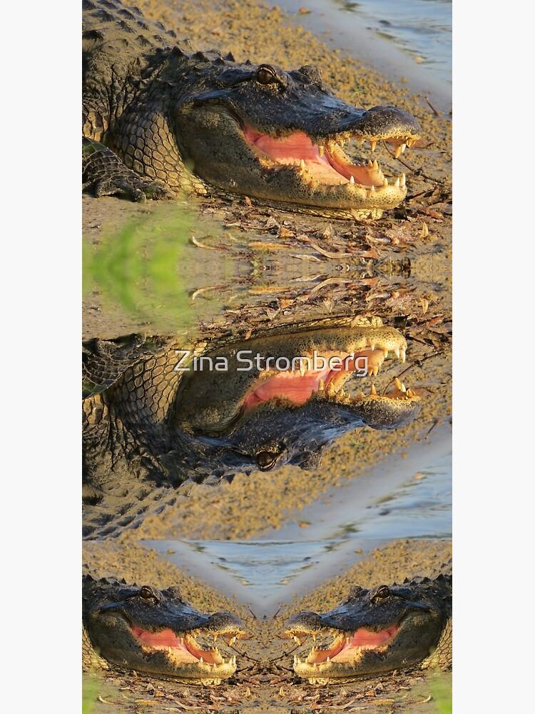 Florida gator by ZinaStromberg