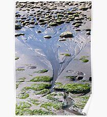 Water flowing on the beach creating a tree shape beach natural design fine art color wall art home decor - L'albero di sabbia Poster