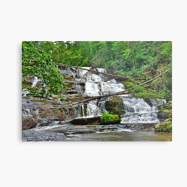 Little Brasstown Creek Falls Metal Print