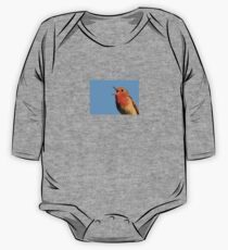 Robin Redbreast One Piece - Long Sleeve