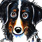 Bernese Mountain Dog Portrait by offleashart
