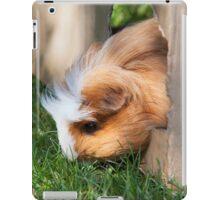 Cute guinea pig iPad Case/Skin