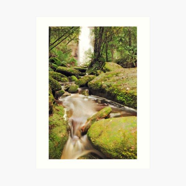 Snug Falls Art Print