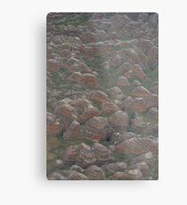The Bungle Bungles Metal Print