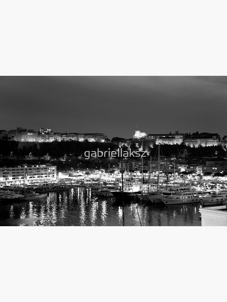 Monaco palace and bay by gabriellaksz