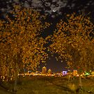 Downtown Albuquerque at Night by IOBurque