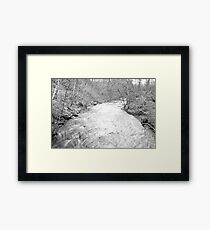 rapid Framed Print