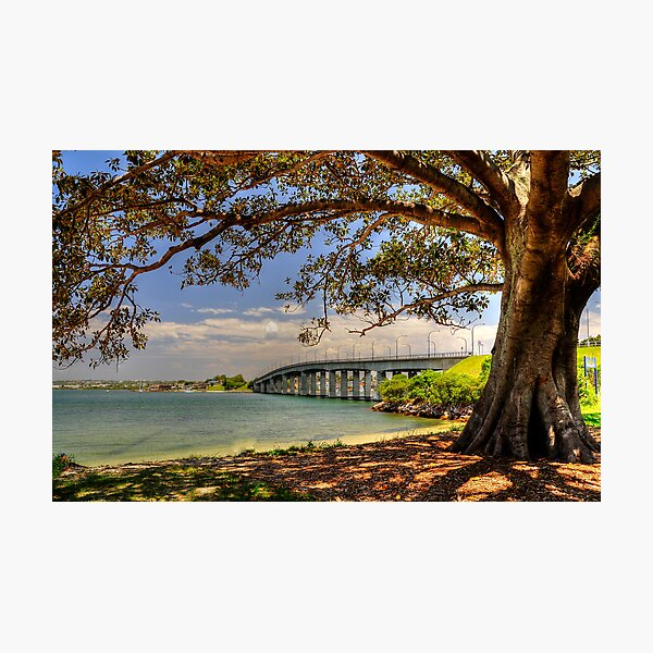 Captain Cook Bridge Photographic Print
