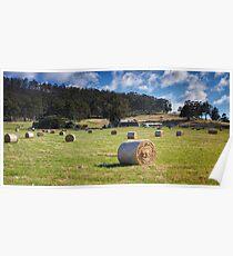 Hay Baling, Sorell, Tasmania Poster