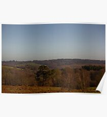 Ashdown Forest, Sussex, England Poster