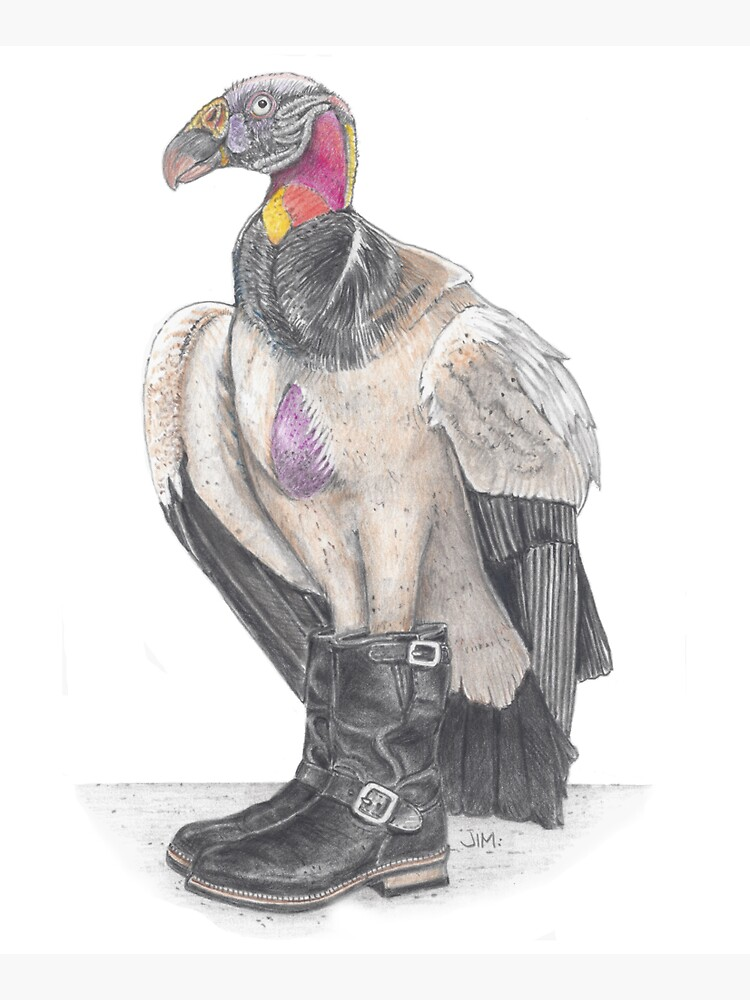 King vulture in biker boots by JimsBirds