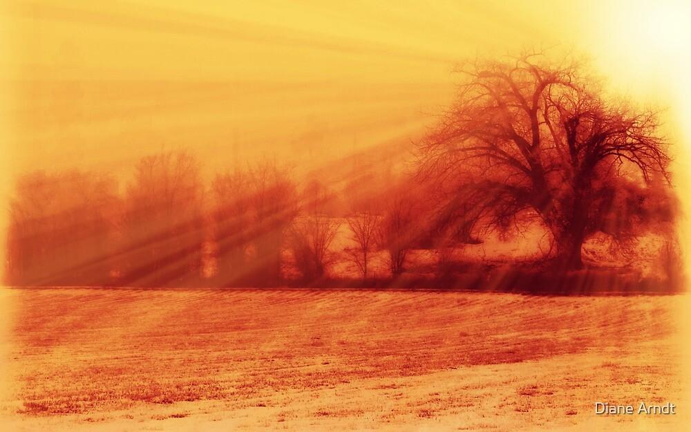 Mellow Morning by Diane Arndt