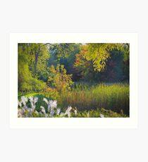 Dreamy Landscape Art Print