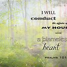 Psalm 101:2 by Musicmaker