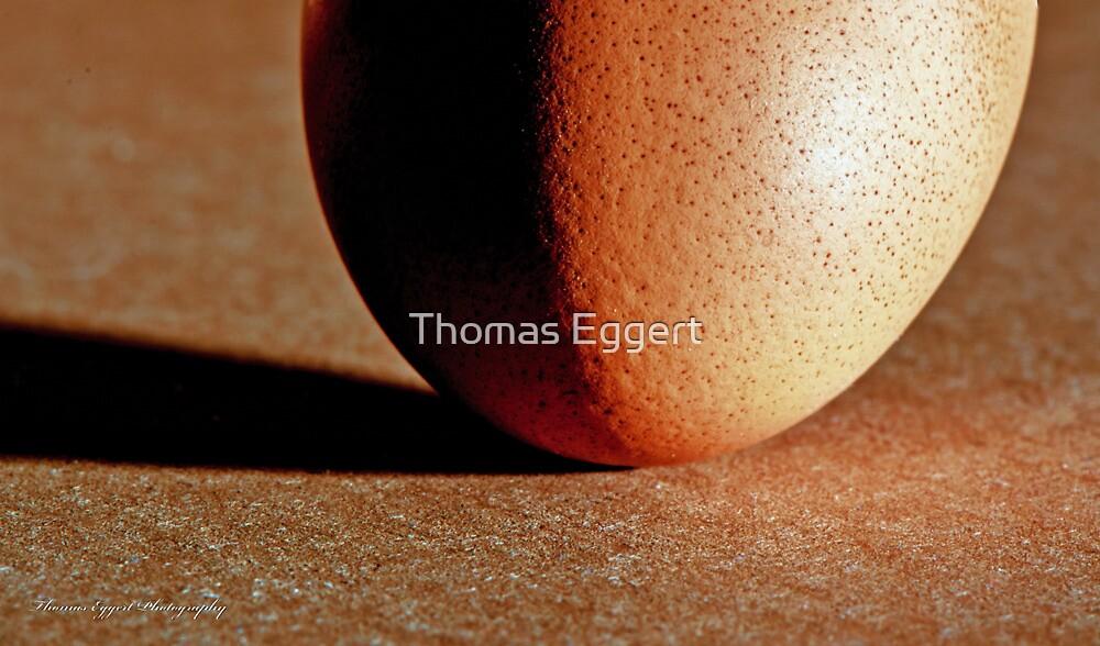 The Egg by Thomas Eggert