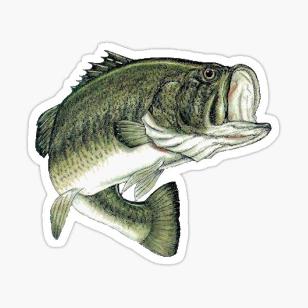 Largemouth Bass - Jumping Bass Sticker