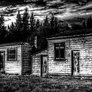 Historic Sheds by Robyn Carter