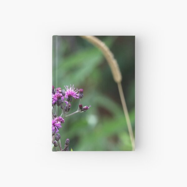 Snowberry Clearwing Moth on Ironweed Hardcover Journal