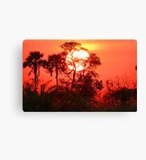 Sunrise in the Okavango Delta Canvas Print