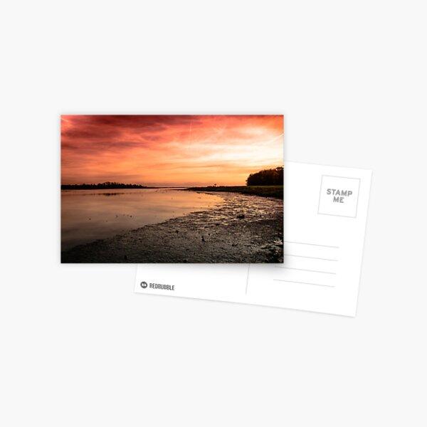 The Estuary Postcard