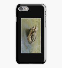 Crocodile Cellphone Case 10 iPhone Case/Skin