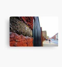 Streetview Canvas Print