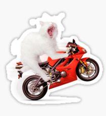 Kitty on a Motorcycle Doing a Wheelie T-shirt design Sticker